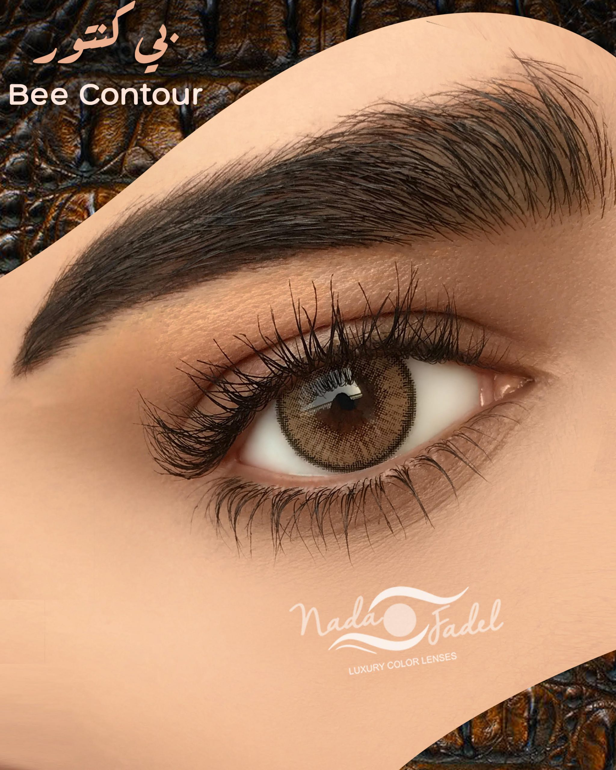 Bee contour